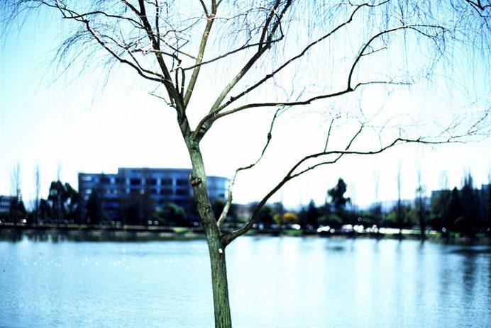 Lee-Emmert-Portland-Lifestyle-Portrait-Advertising-Photographer-Landscape